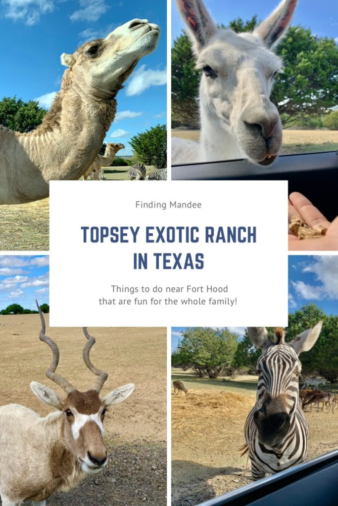 Topsey Exotic Ranch