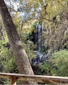 Gorman Falls was a little underwhelming.