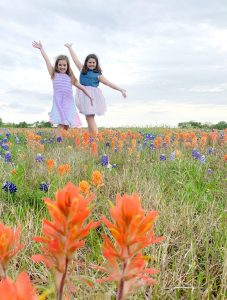 A field of bluebonnets and Indian paintbrush near Fort Hood, Texas