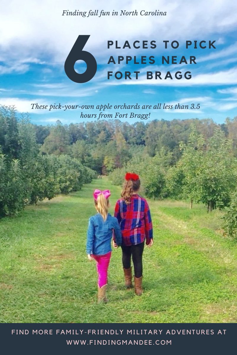 6 Places to Pick Your Own Apples Near Fort Bragg, NC | Finding Mandee