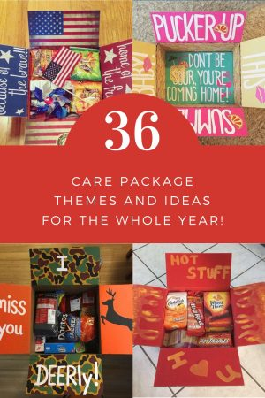36 Care Package Themes and Ideas for the Whole Year   Finding Mandee