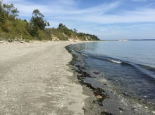 Beach in front of Battery Wansboro