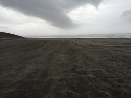 Stormy day at the Peter Iredale beach