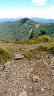 coffin mt trail_july 2016 (81)