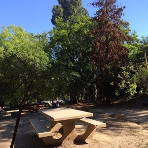 Griffith Park Picnic