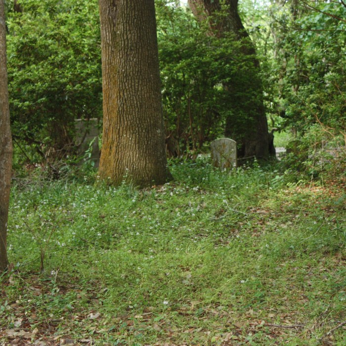 Slave and Free Persons of Color Cemetery