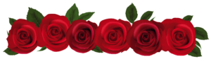 rose-clip-art-border-9tpbdbj8c-png-faqr8x-clipart