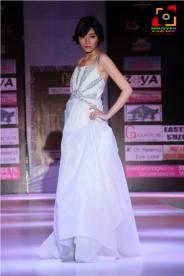 Manipur Fashion Extravaganza 2014 (8)