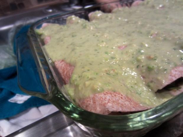 chicken avocado enchiladas assembled sauce