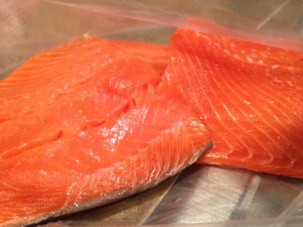 soy glazed grilled salmon fillets
