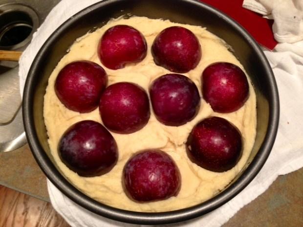 plum torte batter pan plums