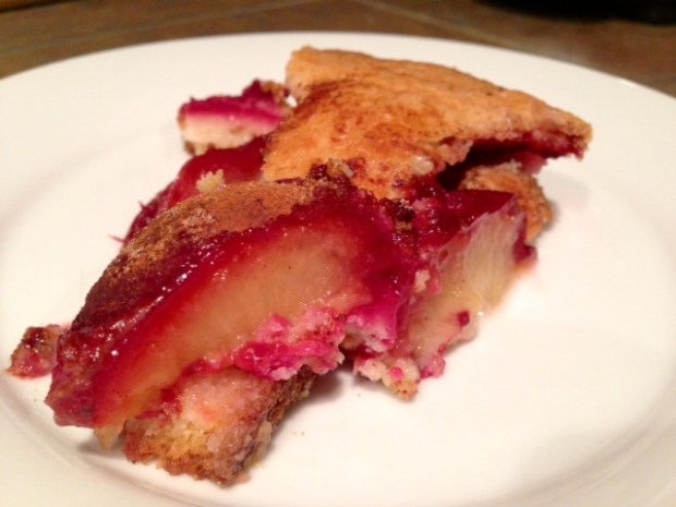 Plum Torte Slice from smitten kitchen
