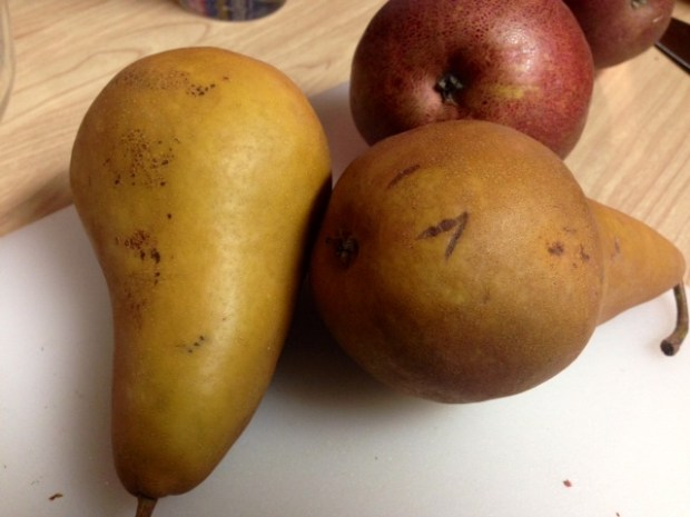 caramel pear pie oat crumble pears