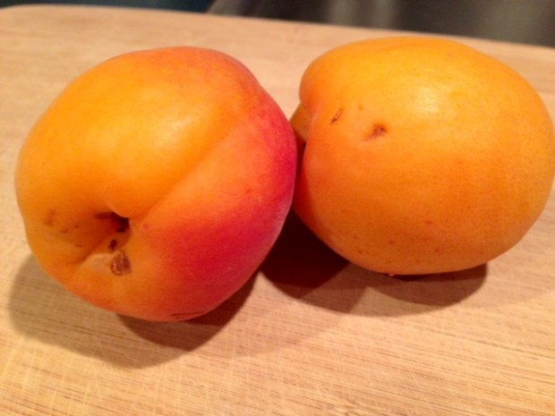 roasted apricot ice cream apricots