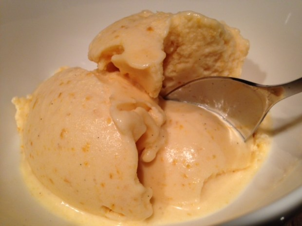 Roasted Apricot Ice Cream wiht Coconut Milk done