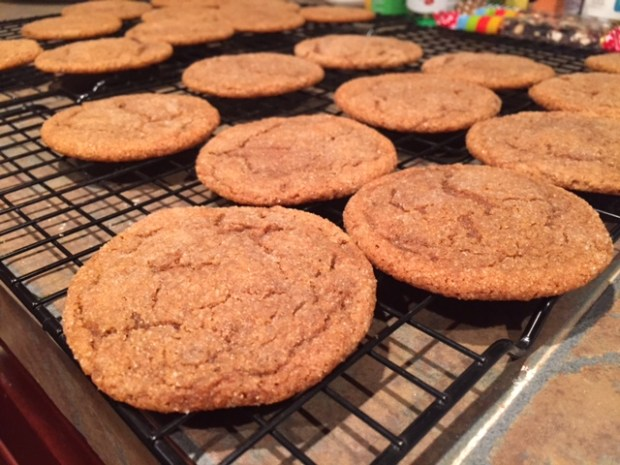 Soft, Chewy Molasses Cookies