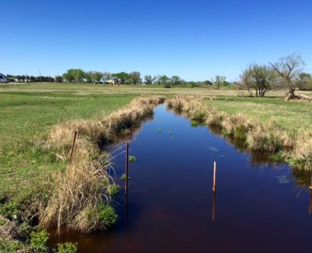 pasture creek full