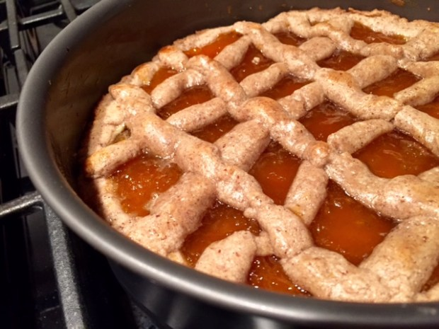 Apricot Linzer Torte closeup