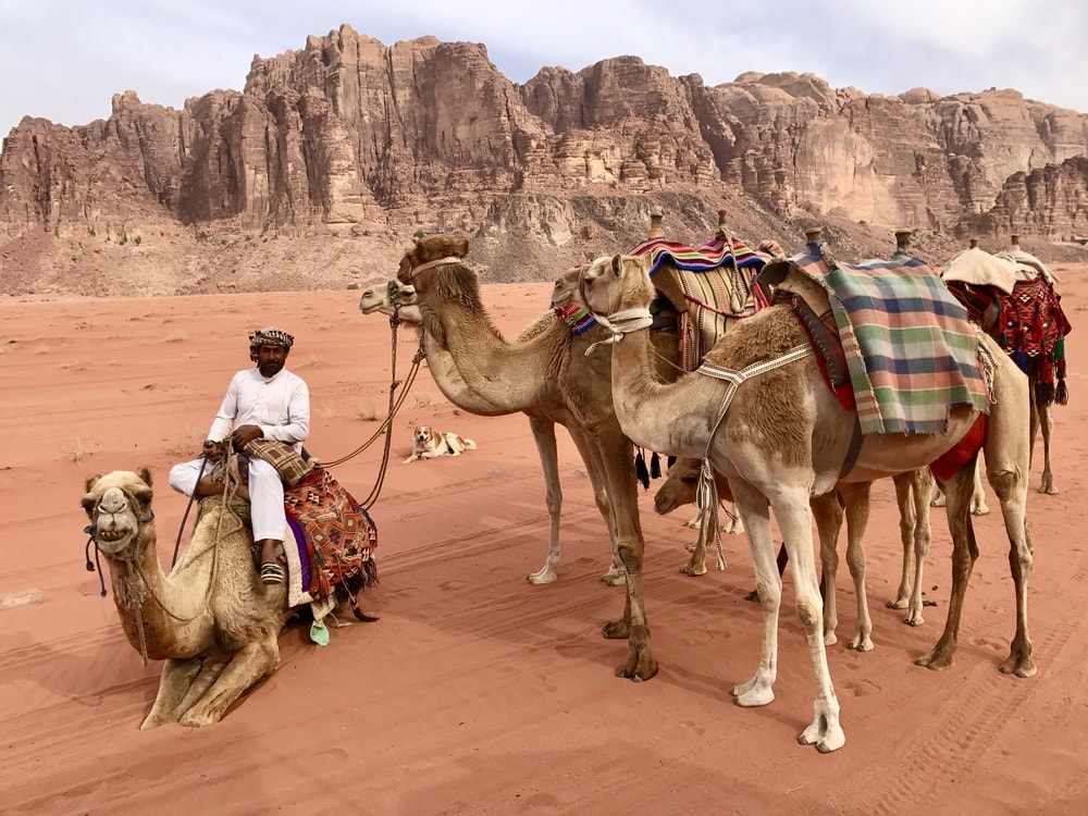 Exploring Jordanian food in Wadi Rum & Petra, including Bedouin cuisine