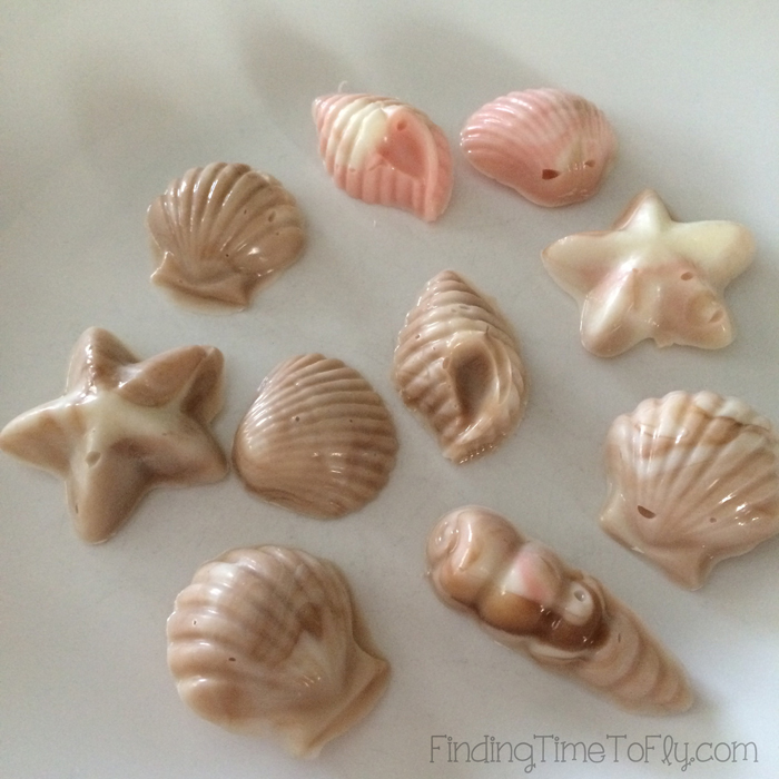 Chocolate-Seashells-On-Plate