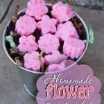 Homemade Flower Sugar Cubes