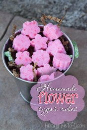 I can't believe how easy these Homemade Flower Sugar Cubes are to make! They would make a great gift idea, too!
