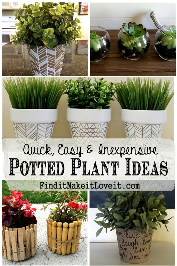 fun with potted plants -sharpies