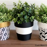 3 Ways to Dress up Terra Cotta Pots