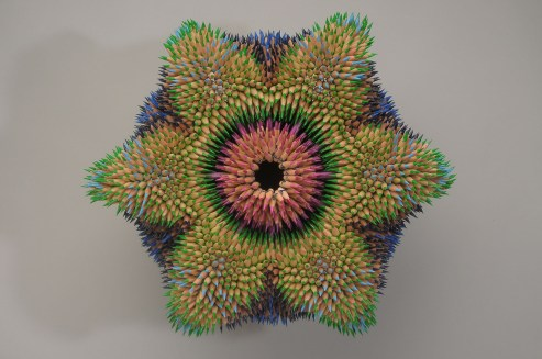 Cycad - Top View (2011)