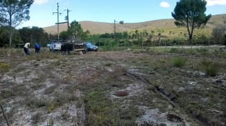 Clearing the site for access