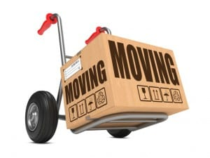 Moving Box on Dolly