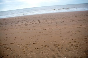 Beach View at Camber Sands - Camber Sands Holiday Park