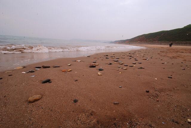 Beach View at Dawlish Sands