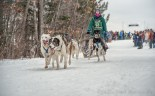 Apostle Islands Dog Sled Races 2015-7409-3