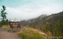 Black Hills SD-3868