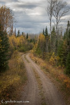 north-shore_fall-3294