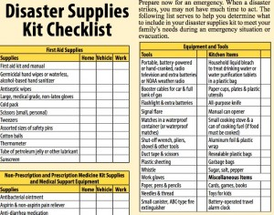 disaster_guide.pdf (page 13 of 24)