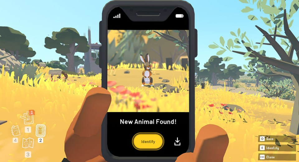 New animal added to the fauna guide