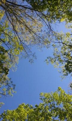 The Beautiful Sky (Photo #1)