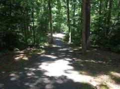 Down-The-Trail-Photo-2