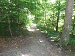 Down-The-Trail-Photo-3
