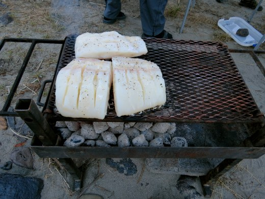 Fresh Halibut on a bed of coals