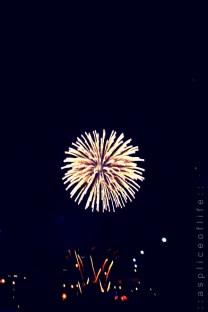 fireworks10.1