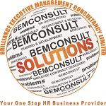 Brilliance Executive Management Consultancy (BEM Consult)