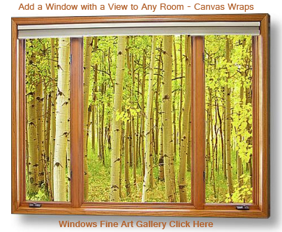 Aspens View - Add a Window with a View to Any Room - Fine Art