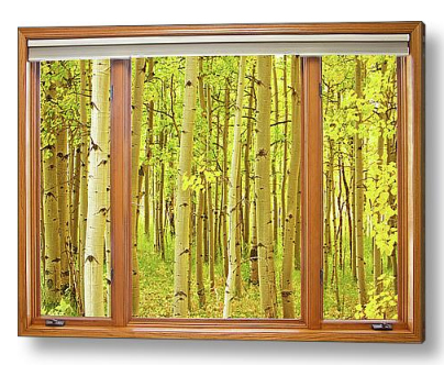 Into The Aspens Window View Dimensions of Interior Decorations Redefined with Fine Art Windows