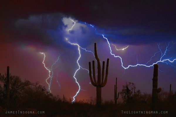 saguaro cactus lightning thunderstorm 600s Professional Art Work Photography