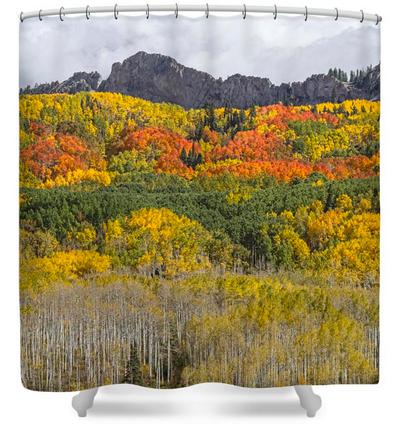 Colorado Kebler Pass Fall Foliage Shower Curtain