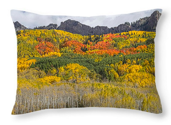 Colorado Kebler Pass Fall Foliage Throw Pillow 20x14