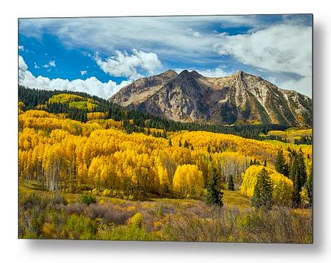 Colorado Rocky Mountain Fall Foliage Metal Print